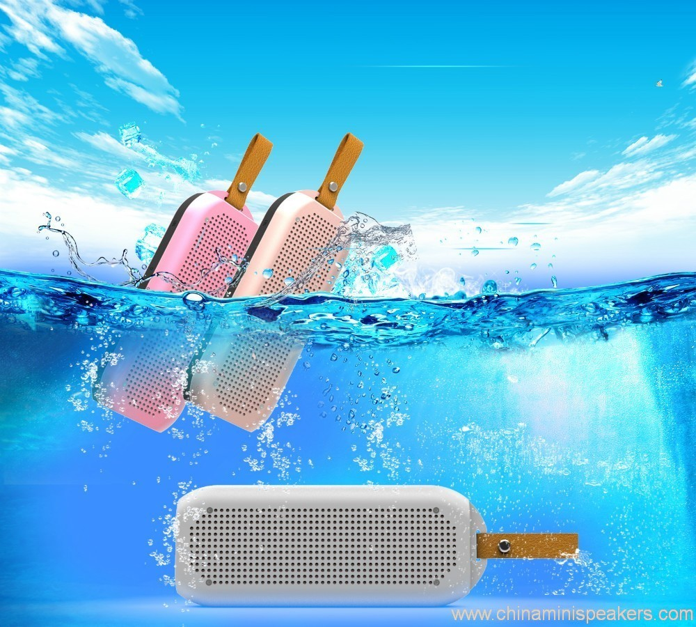 Reliable Waterproof Shower Speaker 6